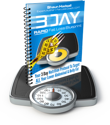 3 day rapid fat loss blueprint a brand new 3 day nutrition protocol that forces your body to burn lower belly fat after a weekend binge yours free malvernweather Choice Image