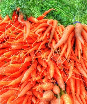 carrots glycemic index