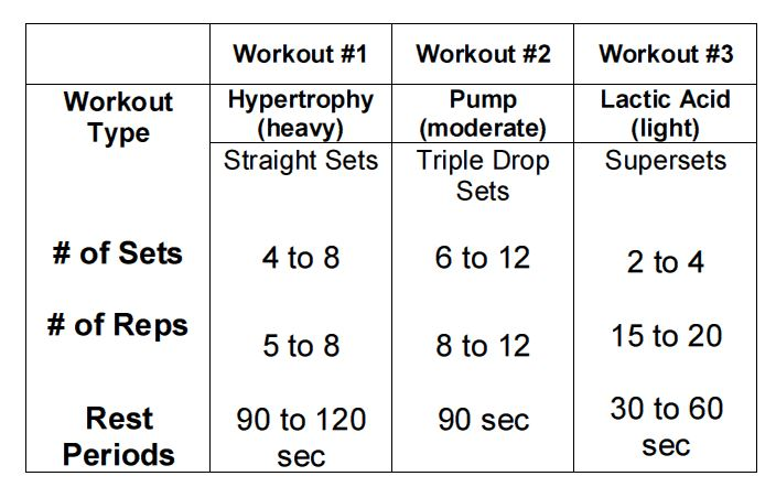 arm workout pdf chart